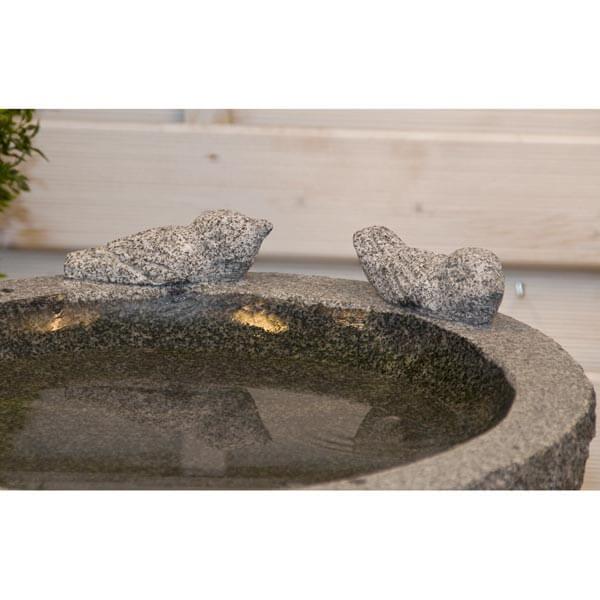 Nærbillede af fuglebad med 2 fugle