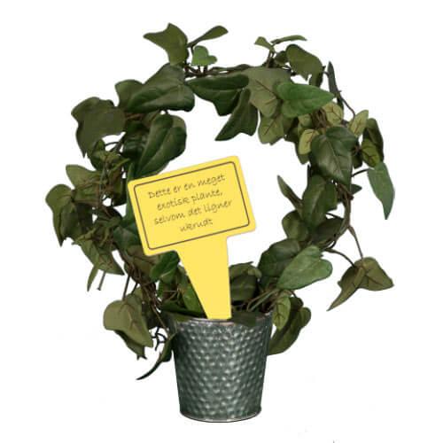 Billede af Sjovt planteskilt - exotisk ukrudt