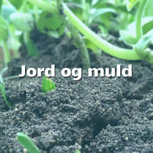 jord og muld