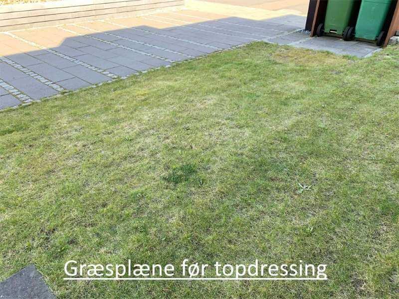 Græsplæne før topdressing