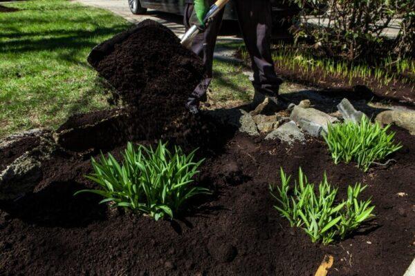 Plantemuld til haven