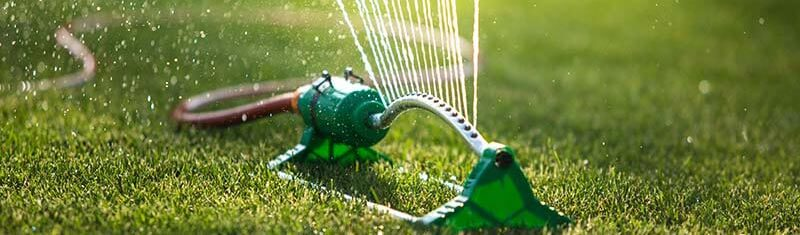 Rullegræs vanding