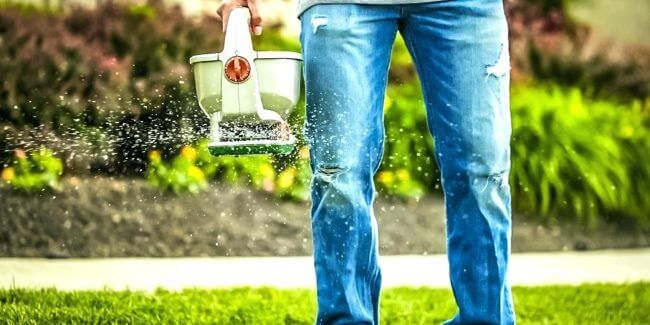 anlæg nemt en ny græsplæne med en håndspreder