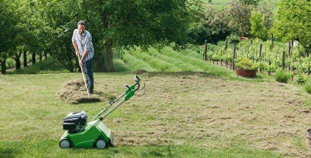 Plænelufter brugt på mosfylt græsplæne
