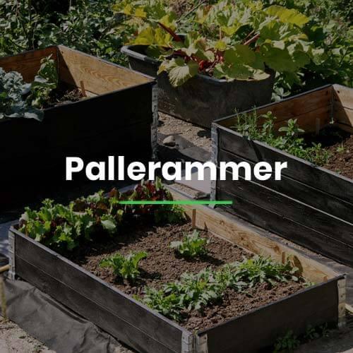 pallerammer