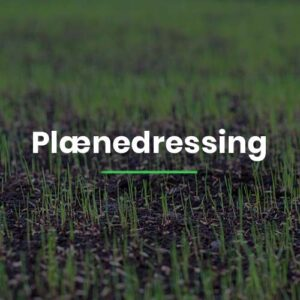 Plænedressing