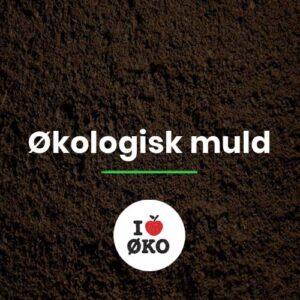 Økologisk muld