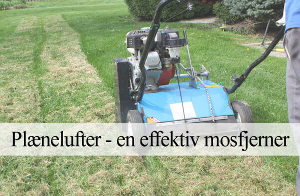 Vertikalskærer og plænelufter mod mos i græsplænen