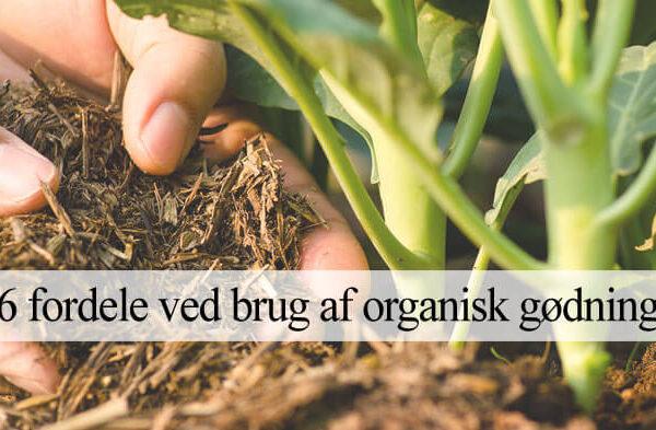 Organisk naturlig gødning