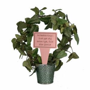 sjovt planteskilt - de bedste ting i livet