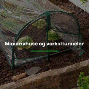 Minidrivhuse og væksttunneler